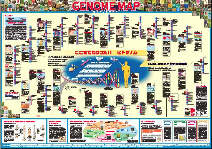ヒトゲノムマップ